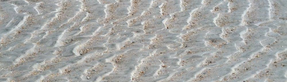 header_sandwaves