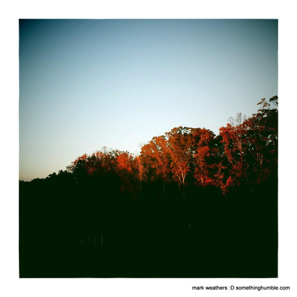 ArlingSandy2_MarkWeathers_2014-11-10_IMG_0071