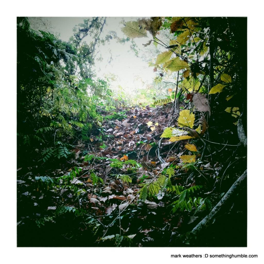 ArlingSandy2_MarkWeathers_2014-11-10_IMG_0096