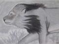 mww_1002_lion